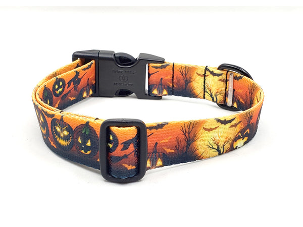 MIDNIGHT FRIGHT | DOG COLLAR