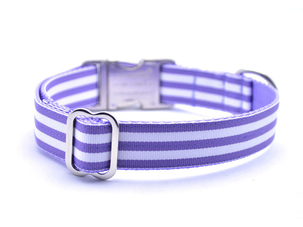 Cabana Stripe Dog Collar with Laser Engraved Personalized Buckle - LAVENDER - Flying Dog Collars