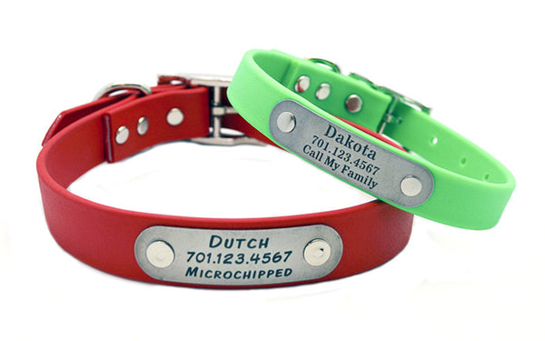 ZETA Waterproof Collar with Laser Engraved NamePlate - Flying Dog Collars