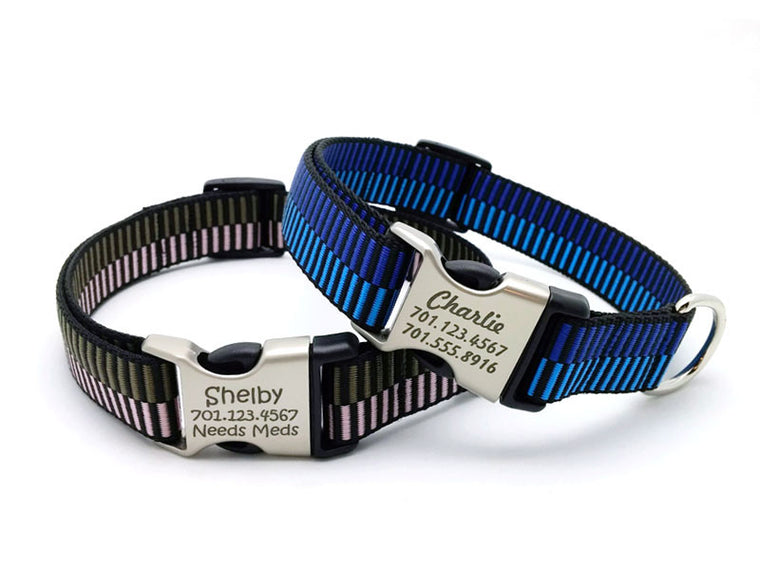 Regency Stripes Webbing Dog Collar with Laser Engraved Personalized Buckle