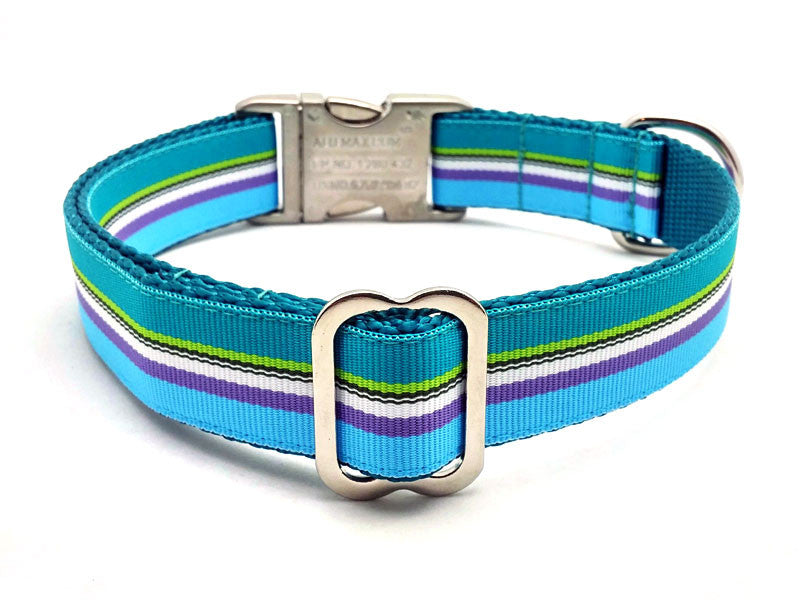 South Seas Dog Collar with Laser Engraved Personalized Buckle - Flying Dog Collars