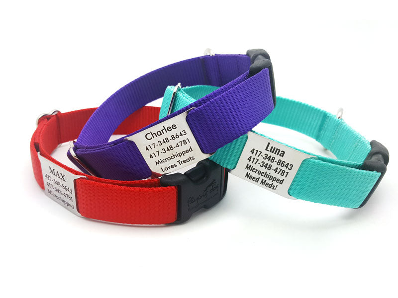 StrapTag Nylon Webbing Collar with Personalized NamePlate - Flying Dog Collars