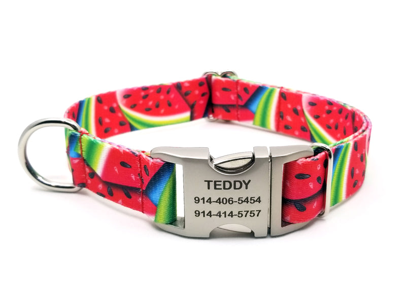Summer Melon Polyester Webbing Dog Collar with Laser Engraved Personalized Buckle - Flying Dog Collars