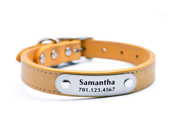 Leather Dog Collar with Laser Engraved Personalized Nameplate - BARLEY