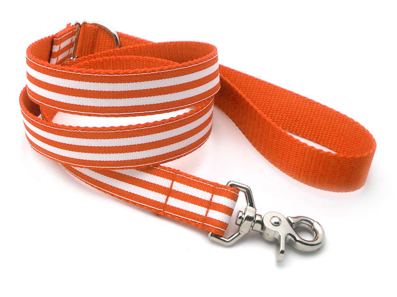 Cabana Stripe Dog Leash
