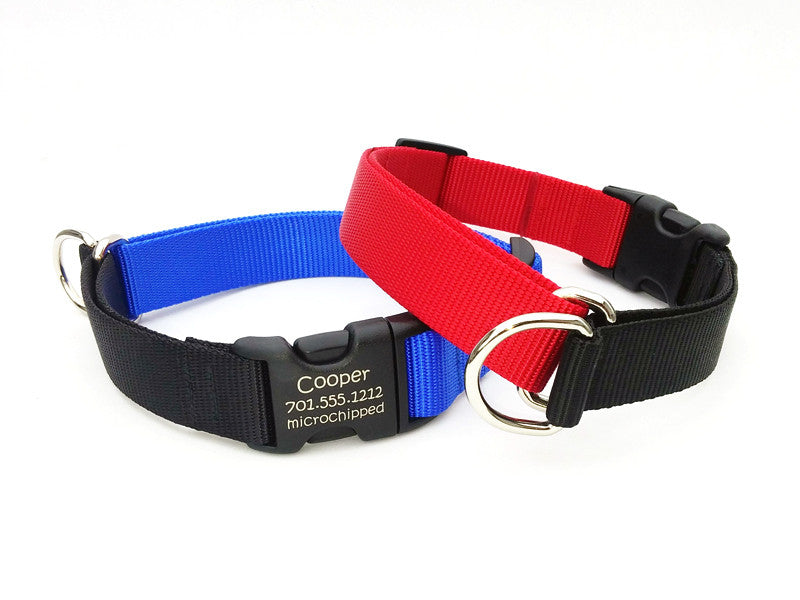 EasySlip Webbing Dog Collar with Laser Marked Personalized Buckle - Flying Dog Collars