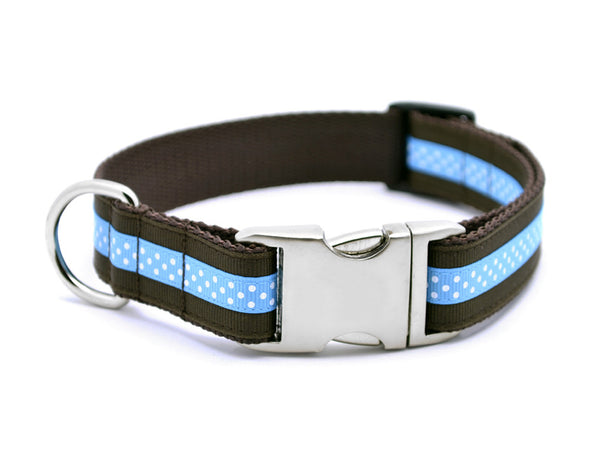 Mini Polka Dot with Plain Buckle - CHOCOLATE/AQUA - Flying Dog Collars