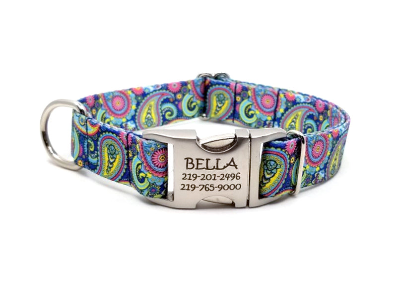 COLORFUL PAISLEY | DOG COLLAR
