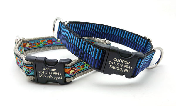 Combo Dog Collar with Personalized Buckle - Flying Dog Collars