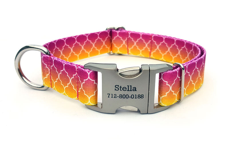 Fabulous Hombre Polyester Webbing Dog Collar with Laser Engraved Personalized Buckle - Flying Dog Collars