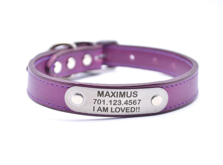 Leather Dog Collar with Laser Engraved Personalized Nameplate - GRAPE