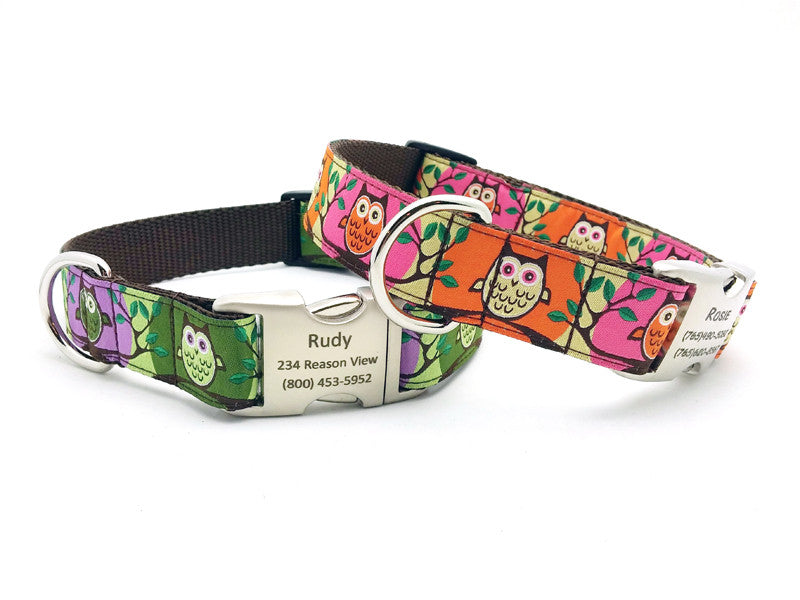 Hootie Dog Collar with Personalized Buckle