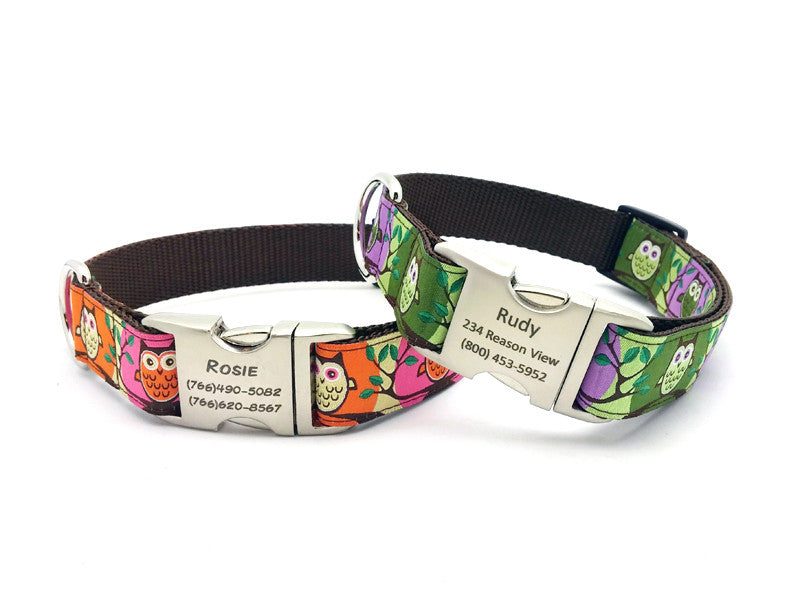 Hootie Dog Collar with Personalized Buckle - Flying Dog Collars