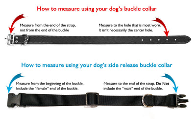 Black & Red Plaid Polyester Webbing Dog Collar with Laser Engraved Personalized Buckle - Flying Dog Collars