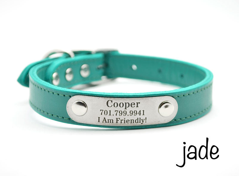 Leather Dog Collar with Personalized Nameplate – Flying Dog Collars