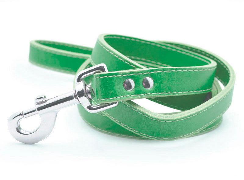 Leather Dog Collar with Laser Engraved Personalized Nameplate - KIWI