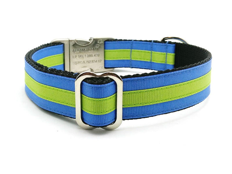 Layered Stripe Dog Collar with Laser Engraved Personalized Buckle - CAPRI BLUE/APPLE GREEN - Flying Dog Collars