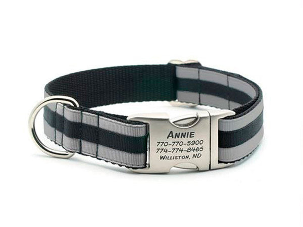 Layered Stripe Dog Collar with Laser Engraved Personalized Buckle - SILVER/BLACK - Flying Dog Collars
