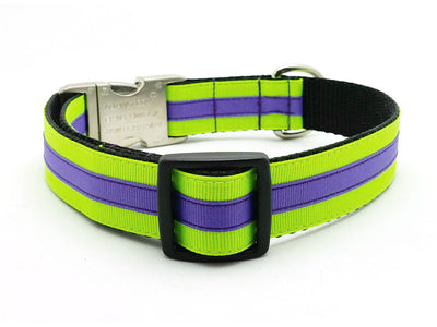 Layered Stripe Dog Collar with Laser Engraved Personalized Buckle - NEON YELLOW/PERIWINKLE - Flying Dog Collars
