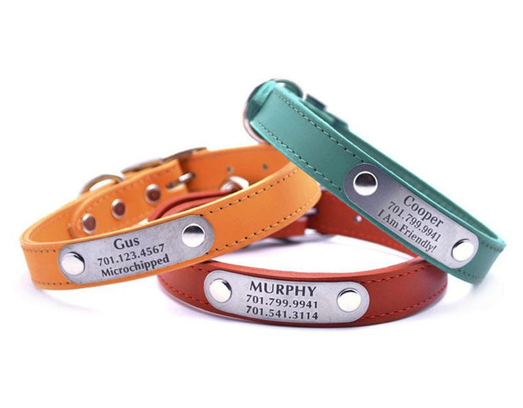 Leather Dog Collar with Personalized Nameplate