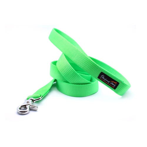 Heavy Duty Adjustable Handle Webbing Leash - Flying Dog Collars