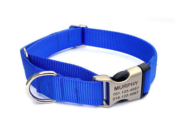 Buckle Martingale Dog Collar with Personalized Buckle - Flying Dog Collars
