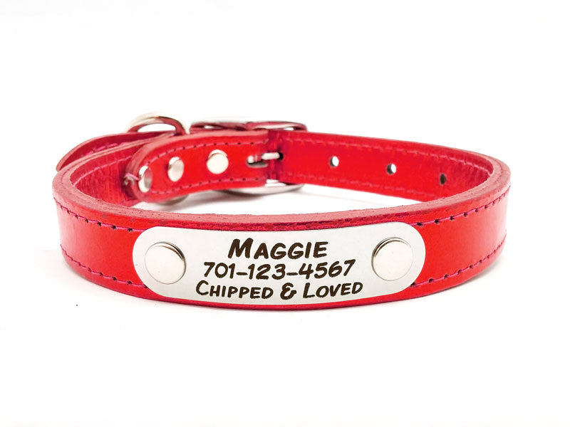 METALLIC Leather Dog Collar with Personalized Nameplate - 11 Colors - Flying Dog Collars