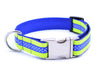Mini Polka Dot with Plain Buckle - NEON YELLOW/ROYAL - Flying Dog Collars