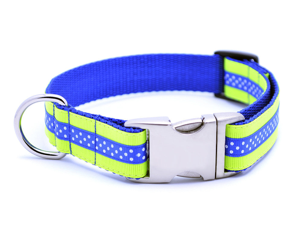 Mini Polka Dot with Plain Buckle - NEON YELLOW/ROYAL