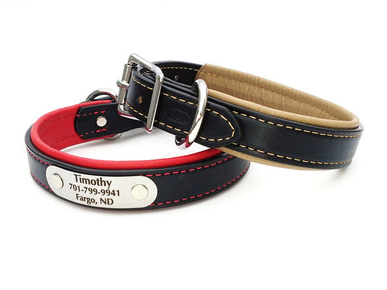 Padded Leather Dog Collar with Laser Engraved Nameplate