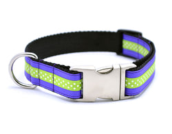 Mini Polka Dot with Plain Buckle - PERIWINKLE/APPLE GREEN - Flying Dog Collars