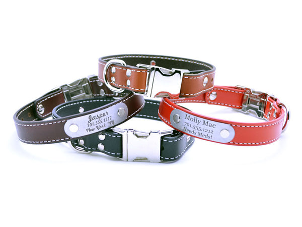 Side Release Buckle Leather Collar with Personalized Nameplate - Flying Dog Collars