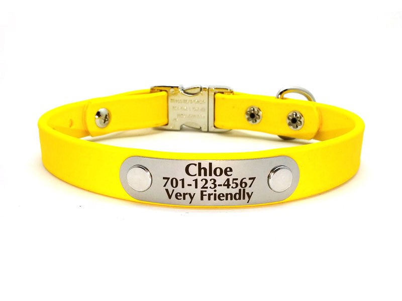 Side Release Buckle Waterproof Collar with Laser Engraved NamePlate - Flying Dog Collars