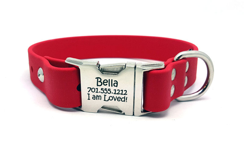 Waterproof Collar with Laser Engraved Side Release Buckle - Flying Dog Collars