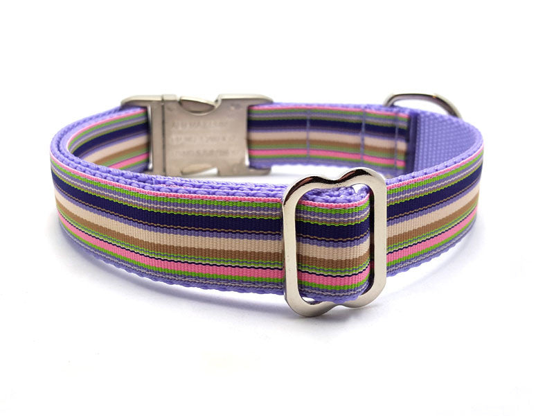 Spring Cabana Dog Collar with Laser Engraved Personalized Buckle