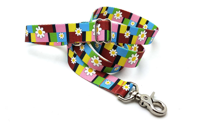 Spring Daisies Adjustable Handle Leash