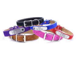 Suede Leather Dog Collar with Laser Engraved Nameplate - Flying Dog Collars