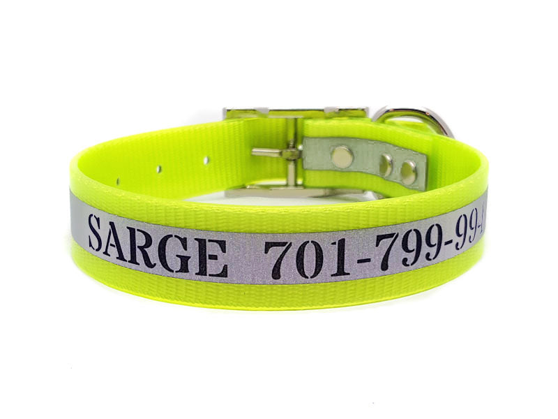 Engraved Reflective Waterproof SunGlo Dog Collars