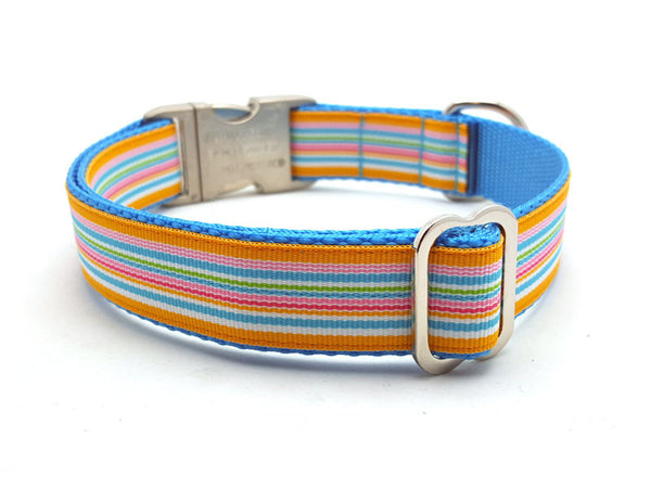 Tahiti Cruise Dog Collar with Laser Engraved Personalized Buckle - Flying Dog Collars