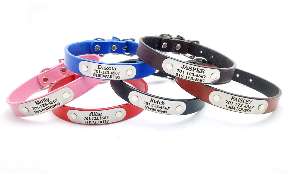 Classic Leather Dog Collar or Leash with Laser Engraved Personalized NamePlate - Flying Dog Collars