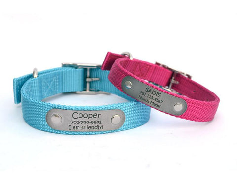 Two-Ply Nylon Dog Collar with Personalized Nameplate
