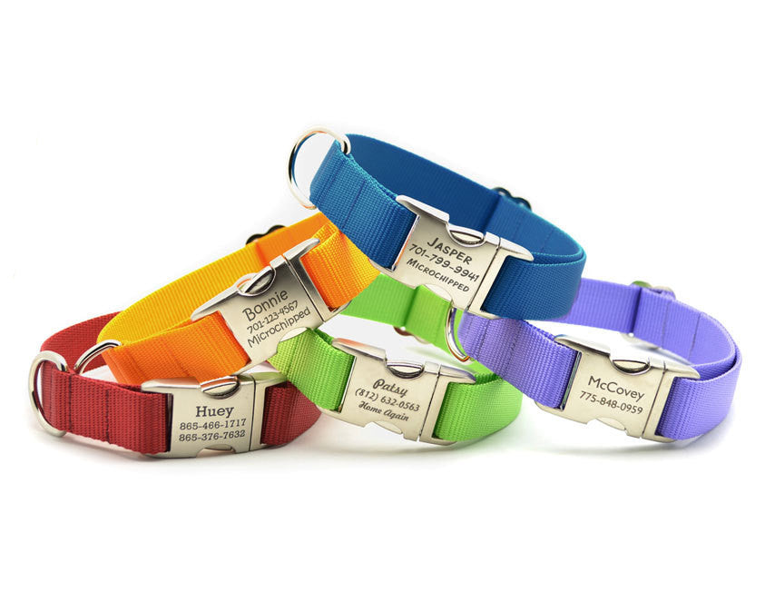 Doggyloot Nylon Webbing Dog Collar with Laser Engraved Personalized Buckle - Flying Dog Collars