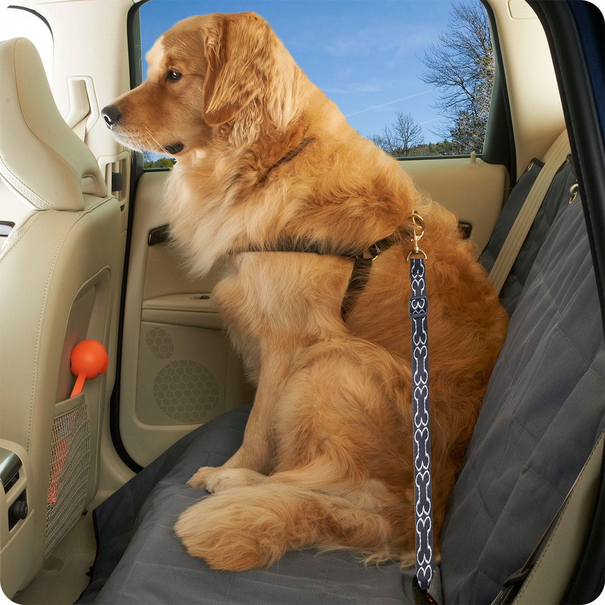 Talus High Road Wag'n Ride Dog Seat Belt Tether