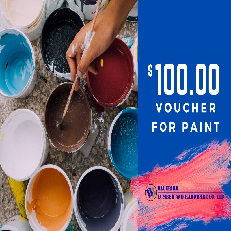 $100 Tala Gift Card for Paint Bluebird Lumber