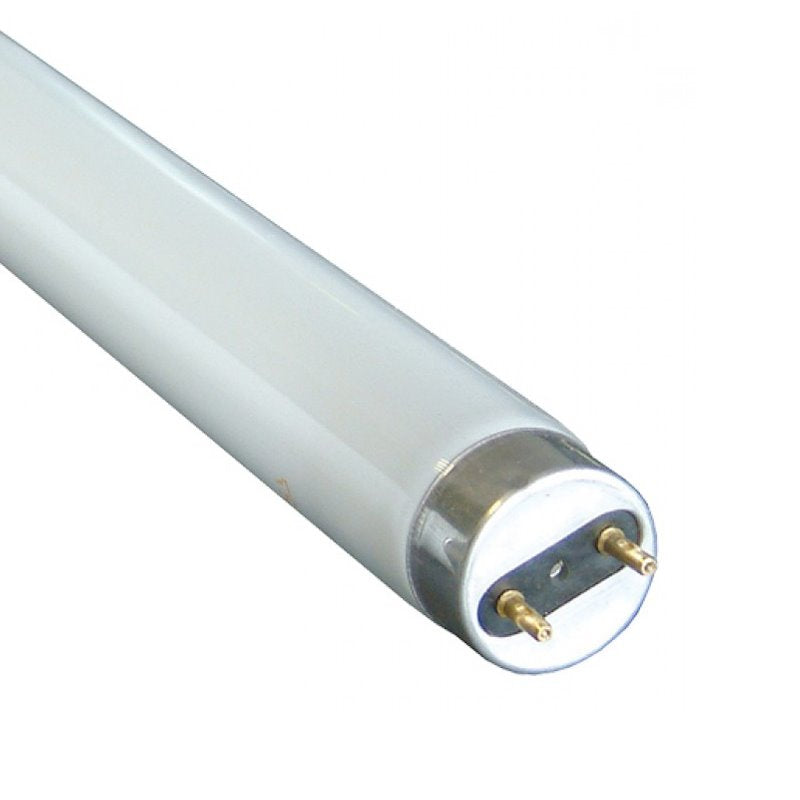 FLUORESCENT TUBE 4ft MASPION - GIE Building Materials Bluebird Lumber
