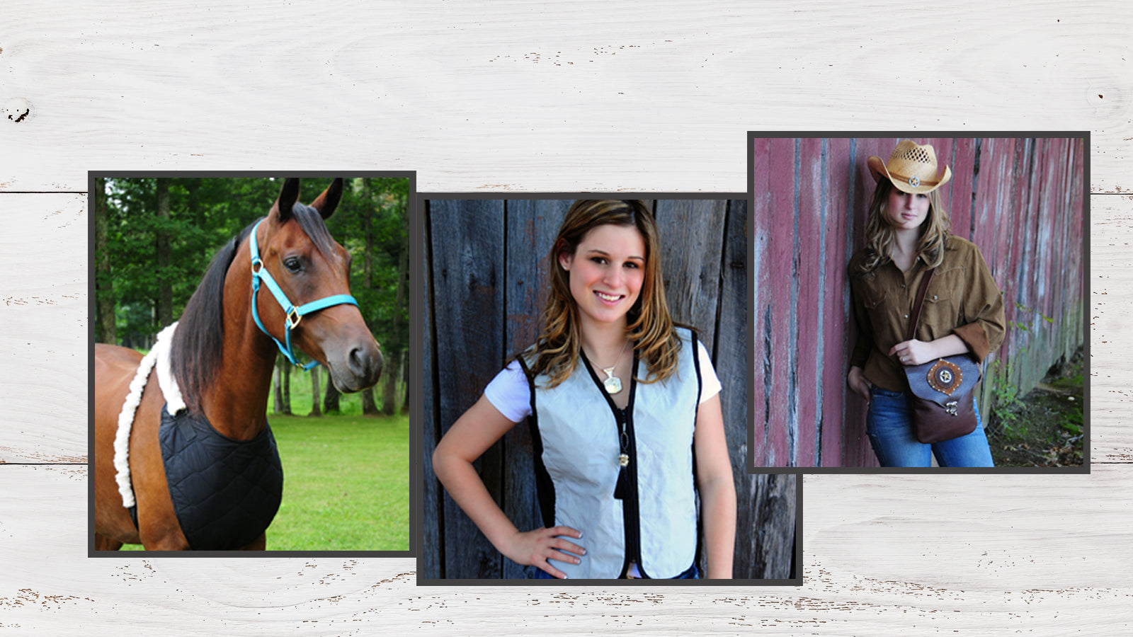 94ba8cff56028 Water Cooled Equine Apparel