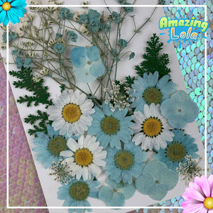 FaceFlowers™ Spring Beauty Pressed Flower Stickers