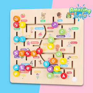 Educational Puzzle Maze Toy