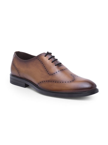 Treemoda Brown Leather Brogues For Men