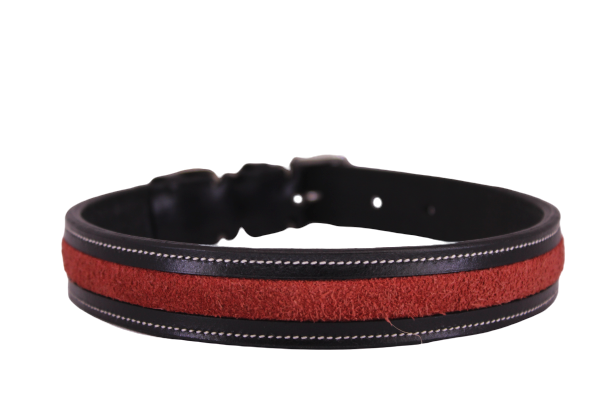 Suede Strip Swarovski Patent Leather Premium Quality Dog Collar